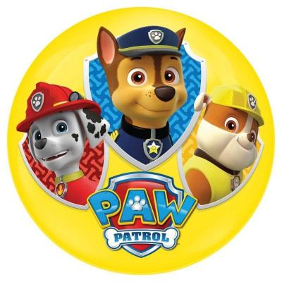 Light Up Ball 100mm Paw Patrol Assortment
